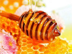 Что необходимо знать в пчеловодстве