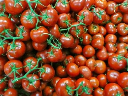 Выращивание помидоров черри доступно каждому