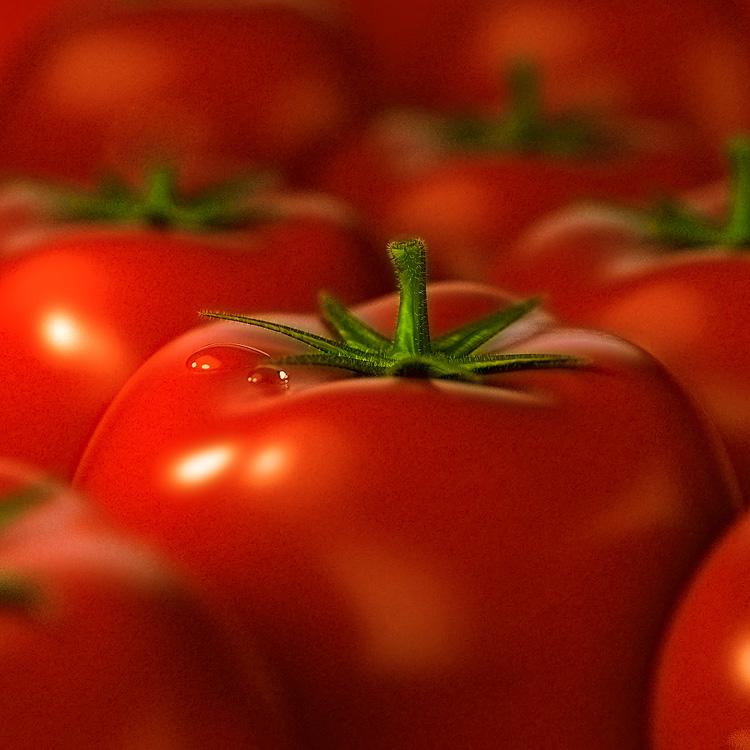 Выращивание помидоров в теплице - это прибыльно