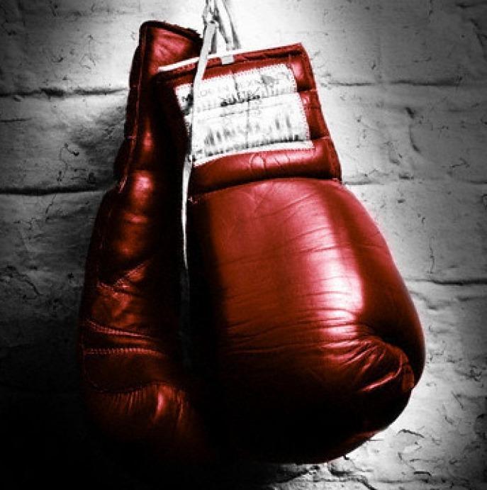 Вид деятельности - бокс