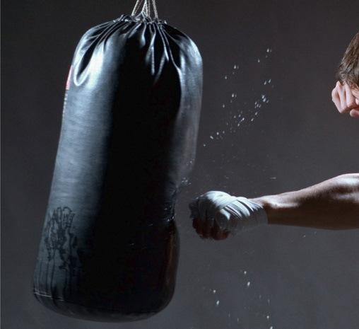 Как заработать на боксе?