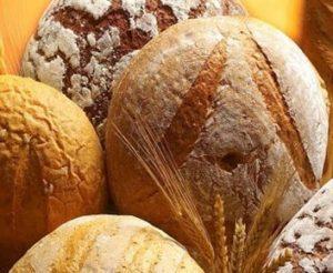 Своя мини-пекарня - стабильный доход