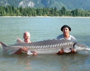 Разведение рыбы - рентабельно ли?