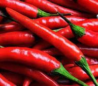 Выращивание и продажа перца — это выгодно!