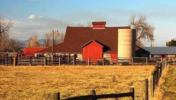 Что включает в себя бизнес план для фермерского хозяйства
