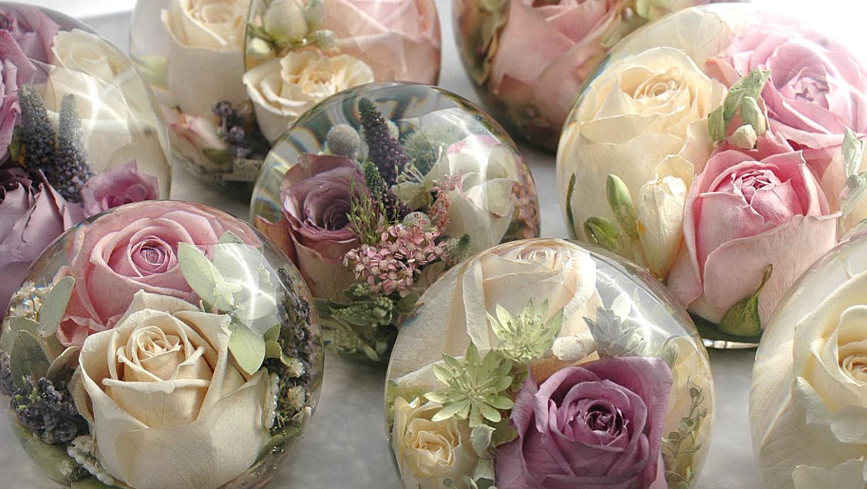 Стабилизированные цветы своими руками мастер 233