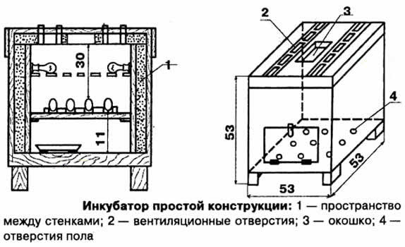 samodelnyj-inkubator