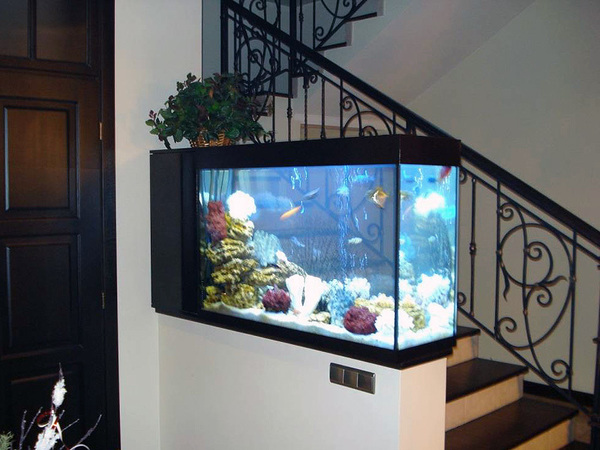 Производство аквариумов бизнес план этапы построения бизнес плана