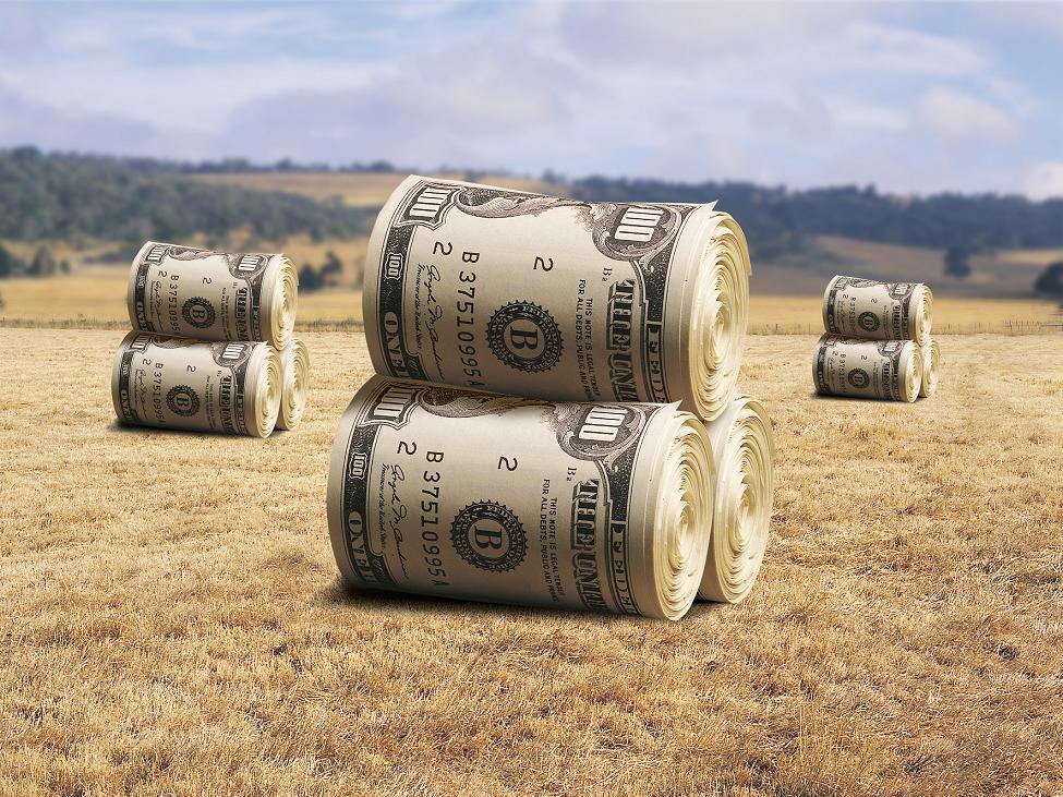 Изображение - 6 идей сельскохозяйственного бизнеса с нуля vygodnyj-biznes-v-selskom-xozyajstve-avtor-2