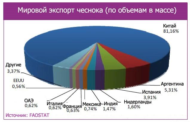 Бизнес на чесноке: рентабильность - Selok