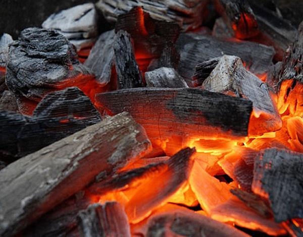 Изображение - Производство древесного угля как бизнес 1-min-3